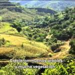 Ethiopia Pushes River Basin Toward Hydrological Disaster